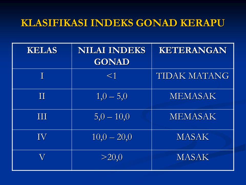 KLASIFIKASI INDEKS GONAD KERAPU KELAS NILAI INDEKS GONAD KETERANGAN I<1 TIDAK MATANG II 1,0 – 5,0 MEMASAK III 5,0 – 10,0 MEMASAK IV 10,0 – 20,0 MASAK