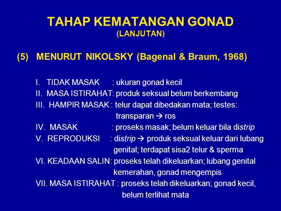 TAHAP KEMATANGAN GONAD (LANJUTAN) (5) MENURUT NIKOLSKY (Bagenal & Braum, 1968) I. TIDAK MASAK : ukuran gonad kecil II. MASA ISTIRAHAT: produk seksual