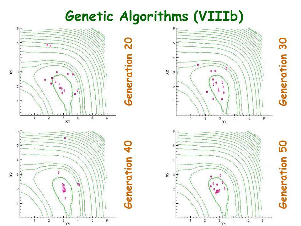 Genetic Algorithms (VIIIb) Generation 20 Generation 30 Generation 40 Generation 50