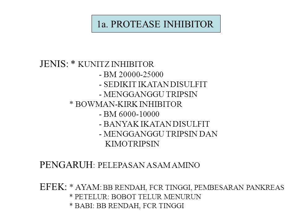 1a. PROTEASE INHIBITOR JENIS: * KUNITZ INHIBITOR - BM 20000-25000 - SEDIKIT IKATAN DISULFIT - MENGGANGGU TRIPSIN * BOWMAN-KIRK INHIBITOR - BM 6000-100