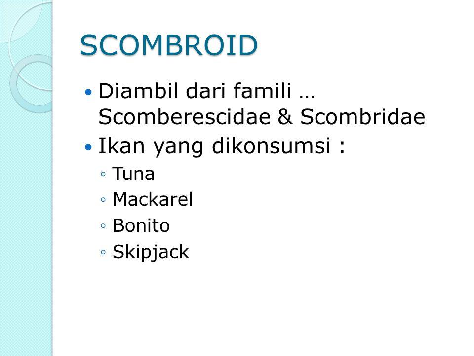 SCOMBROID Diambil dari famili … Scomberescidae & Scombridae Ikan yang dikonsumsi : ◦Tuna ◦Mackarel ◦Bonito ◦Skipjack