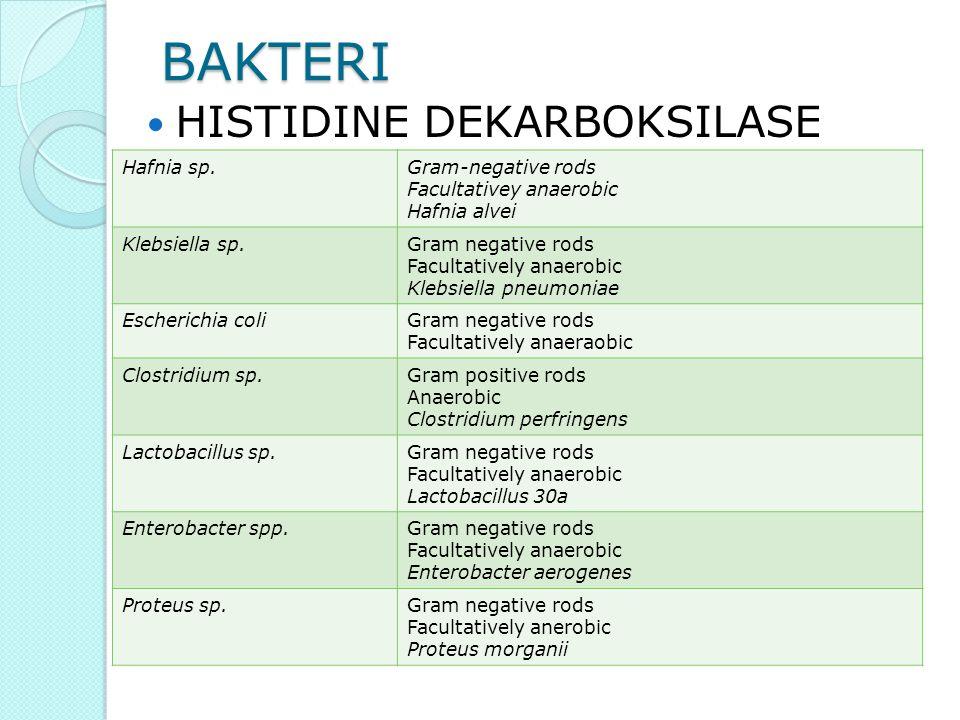 Efek Histamin Hypotension Hemoconcentration Gejala : sakit kepala, mual, kejang, diare, muntah, terasa terbakar di tenggorokan,