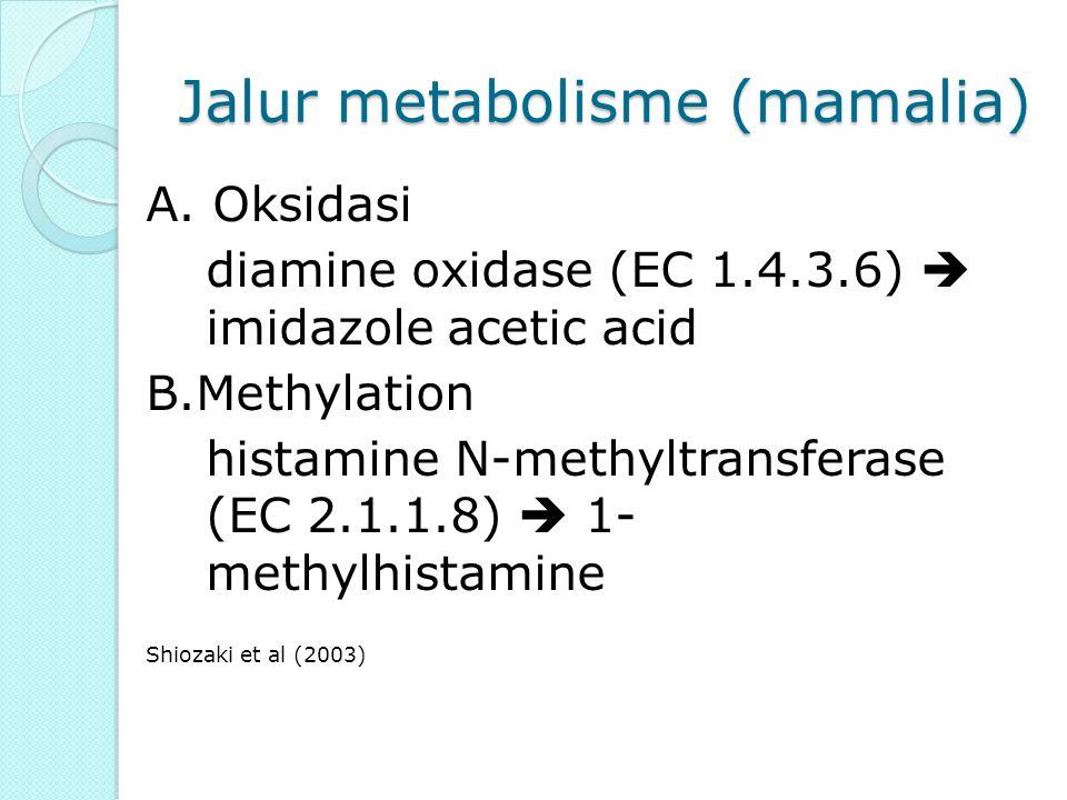 6 NH 2 PERUBAHAN HISTIDIN MENJADI HISTAMIN COOH CH 2 CN DECARBOXILASE BAKTERIOLOGIS Proteus morgani NH 2 H C C CH NH N CH CH 2 C CH NH N CH