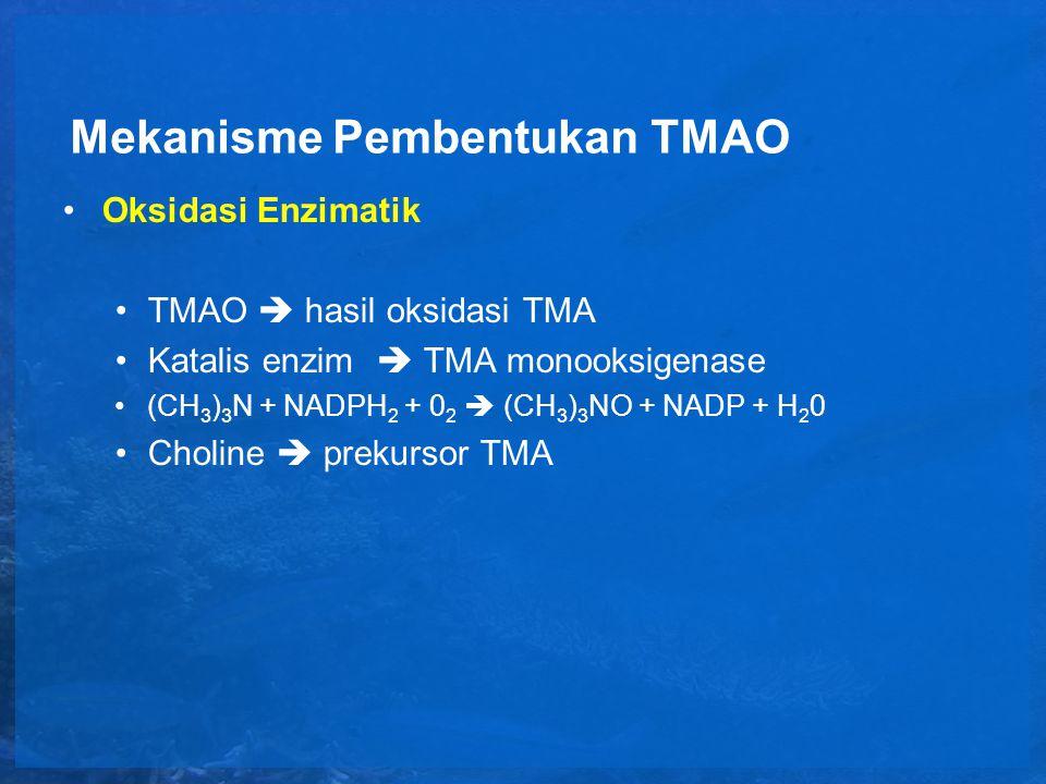 Mekanisme Pembentukan TMAO Oksidasi Non enzimatik Jalur oksidasi TMAO : 1.O 2 berikatan dengan TMA  TMAO 2.Dimetilasi TMA0  DMA +FA 3.Oksidasi N-dimetilasi menghasilkan DMA+FA secara langsung dari TMA (TMA dehidrogenase)