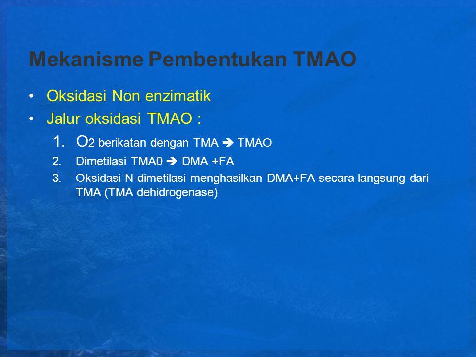 Mekanisme Pembentukan TMAO Oksidasi Non enzimatik Jalur oksidasi TMAO : 1.O 2 berikatan dengan TMA  TMAO 2.Dimetilasi TMA0  DMA +FA 3.Oksidasi N-dim