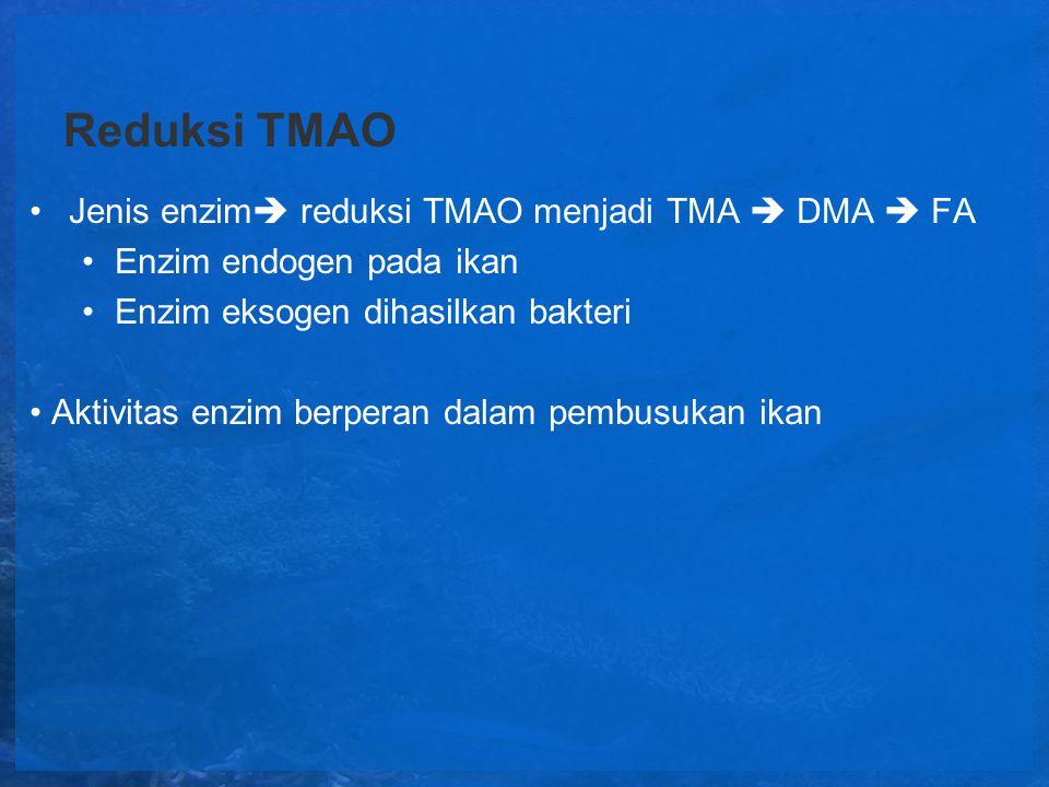 Reduksi TMAO Jenis enzim  reduksi TMAO menjadi TMA  DMA  FA Enzim endogen pada ikan Enzim eksogen dihasilkan bakteri Aktivitas enzim berperan dalam
