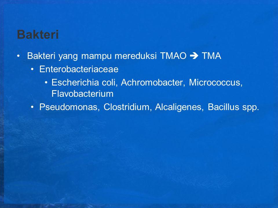 Bakteri Bakteri yang mampu mereduksi TMAO  TMA Enterobacteriaceae Escherichia coli, Achromobacter, Micrococcus, Flavobacterium Pseudomonas, Clostridi