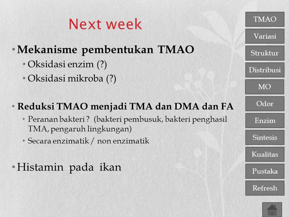 TMAO Variasi Distribusi Struktur MO Odor Enzim Sintesis Kualitas Pustaka Refresh Next week Mekanisme pembentukan TMAO Oksidasi enzim (?) Oksidasi mikr