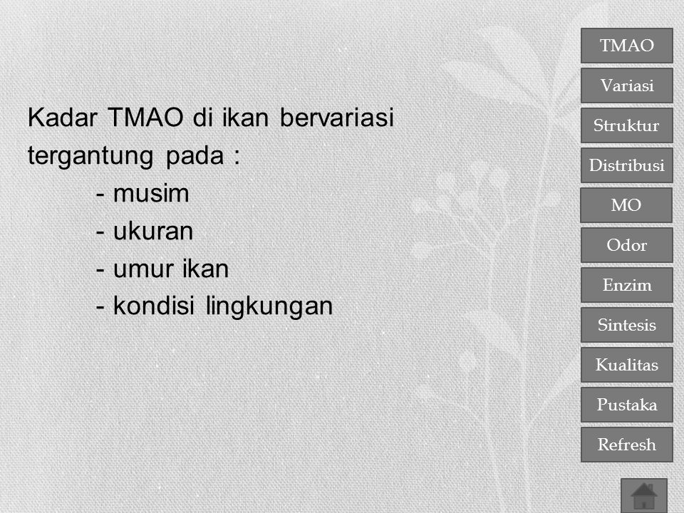 TMAO Variasi Distribusi Struktur MO Odor Enzim Sintesis Kualitas Pustaka Refresh Kadar TMAO di ikan bervariasi tergantung pada : - musim - ukuran - um