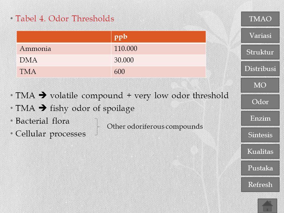 TMAO Variasi Distribusi Struktur MO Odor Enzim Sintesis Kualitas Pustaka Refresh Tabel 4. Odor Thresholds TMA  volatile compound + very low odor thre