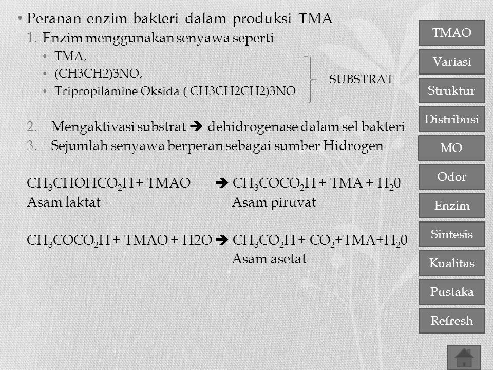 TMAO Variasi Distribusi Struktur MO Odor Enzim Sintesis Kualitas Pustaka Refresh Peranan enzim bakteri dalam produksi TMA 1.Enzim menggunakan senyawa
