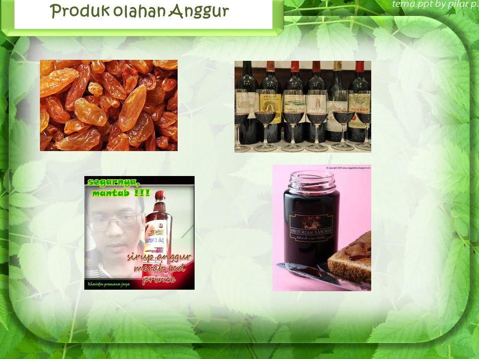 Produk olahan Anggur