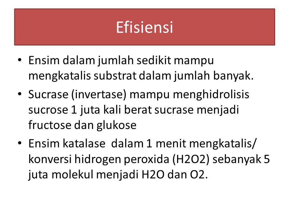 ARTI ENSIM Adalah katalisator metabolisme yang dapat meningkatkan laju reaksi kimia dan menurunkan aktifitas energi yang digunakan dalam reaksi.