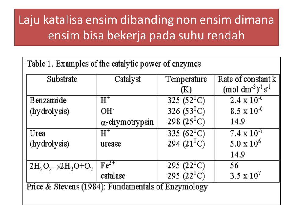 Kecepatan reaksi ensim Carbonic anhydrase : 10 7  hexokinase  10 10  phosphorylase  3.10 11  alcohol dehydrogenase  2.10 8  creatine kinase  10 4.