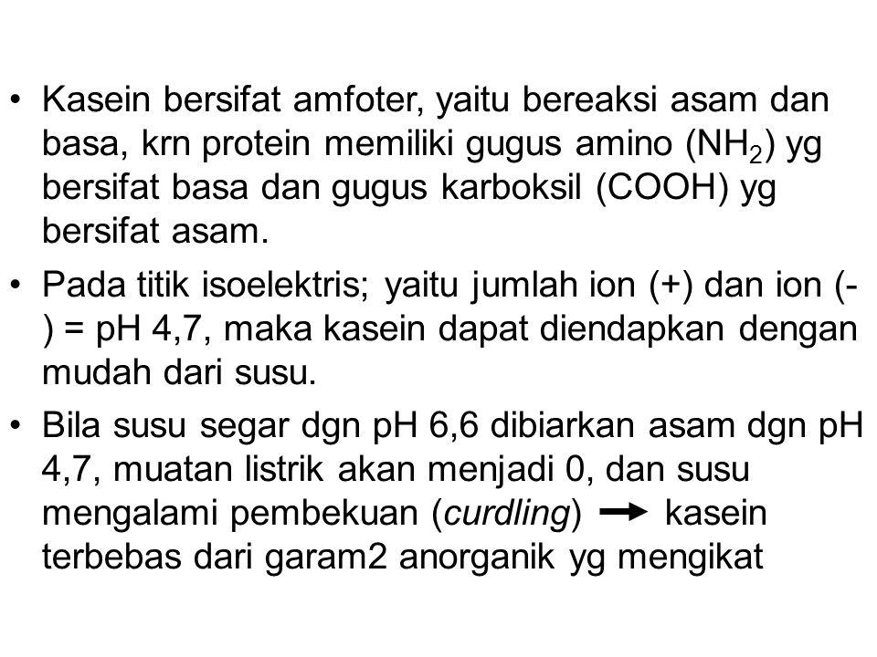 Kasein bersifat amfoter, yaitu bereaksi asam dan basa, krn protein memiliki gugus amino (NH 2 ) yg bersifat basa dan gugus karboksil (COOH) yg bersifa
