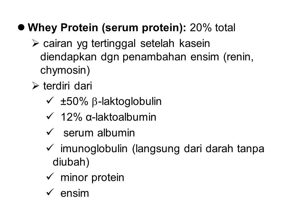 Whey Protein (serum protein): 20% total  cairan yg tertinggal setelah kasein diendapkan dgn penambahan ensim (renin, chymosin)  terdiri dari ±50% 
