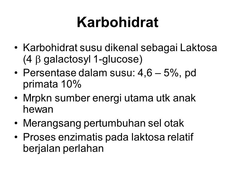 Karbohidrat Karbohidrat susu dikenal sebagai Laktosa (4  galactosyl 1-glucose) Persentase dalam susu: 4,6 – 5%, pd primata 10% Mrpkn sumber energi ut