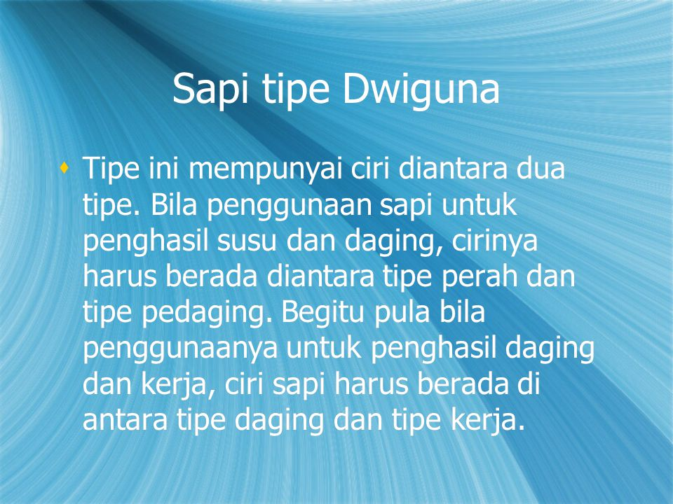 Sapi tipe Dwiguna  Tipe ini mempunyai ciri diantara dua tipe.