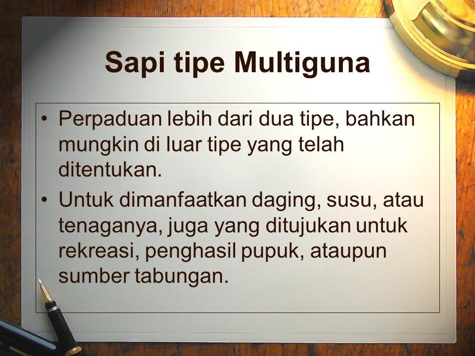 Sapi tipe Multiguna Perpaduan lebih dari dua tipe, bahkan mungkin di luar tipe yang telah ditentukan.