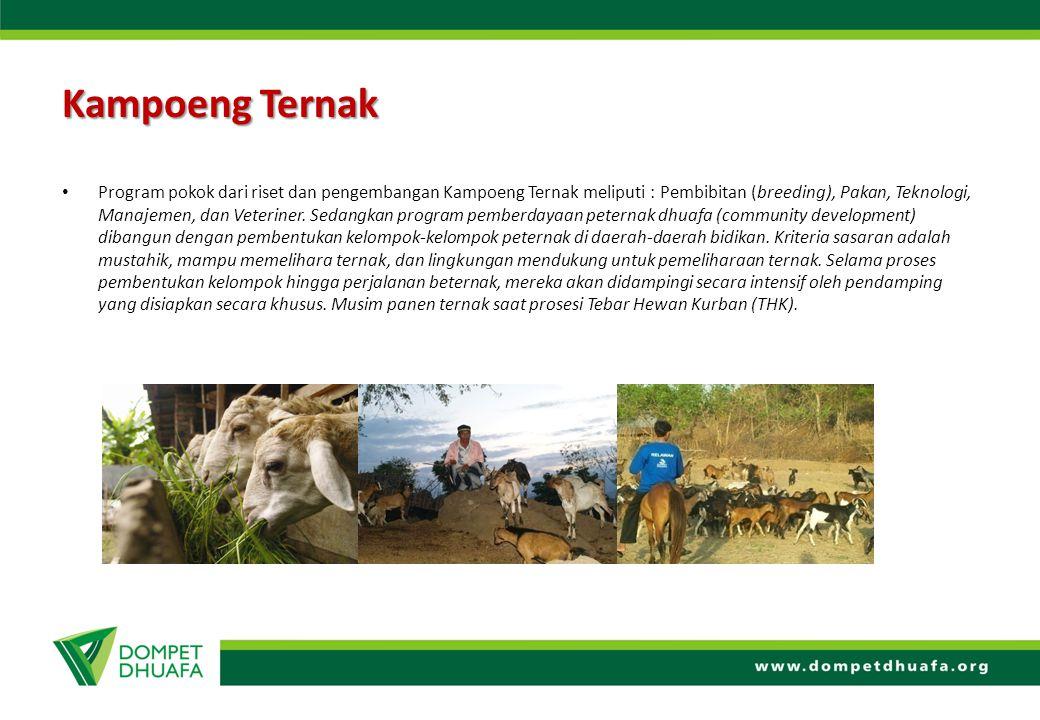 Kampoeng Ternak Program pokok dari riset dan pengembangan Kampoeng Ternak meliputi : Pembibitan (breeding), Pakan, Teknologi, Manajemen, dan Veteriner