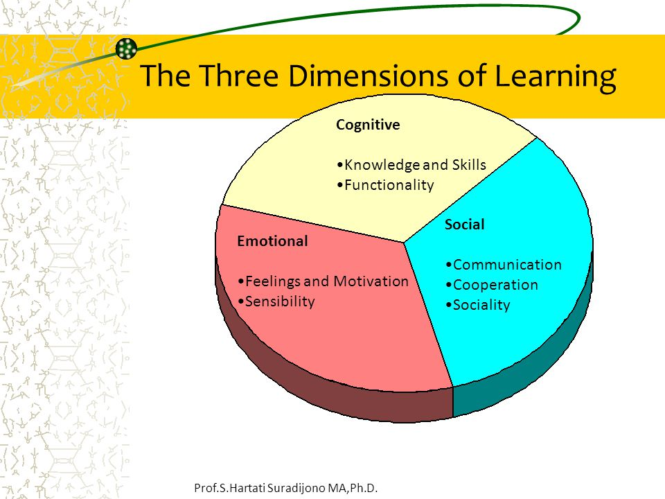 The Three Dimensions of Learning Cognitive Knowledge and Skills Functionality Emotional Feelings and Motivation Sensibility Social Communication Cooperation Sociality Prof.S.Hartati Suradijono MA,Ph.D.