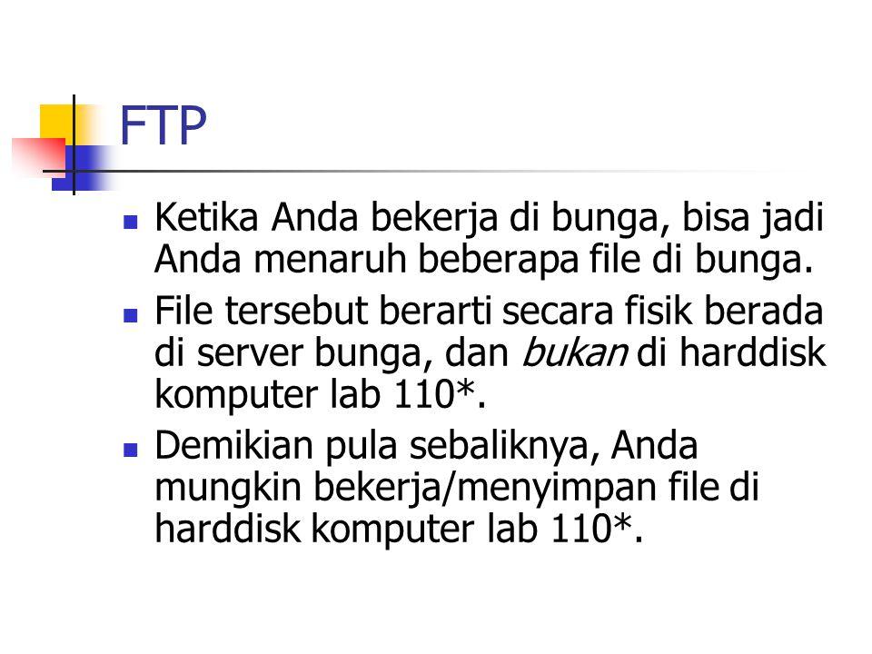 FTP Ketika Anda bekerja di bunga, bisa jadi Anda menaruh beberapa file di bunga.