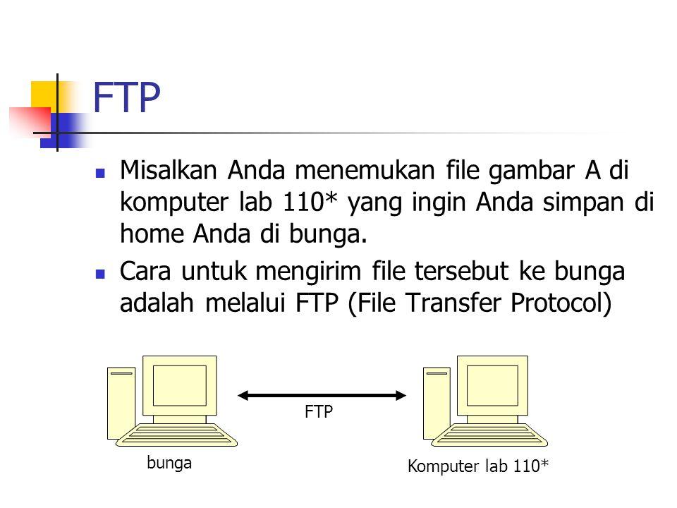 FTP Misalkan Anda menemukan file gambar A di komputer lab 110* yang ingin Anda simpan di home Anda di bunga.