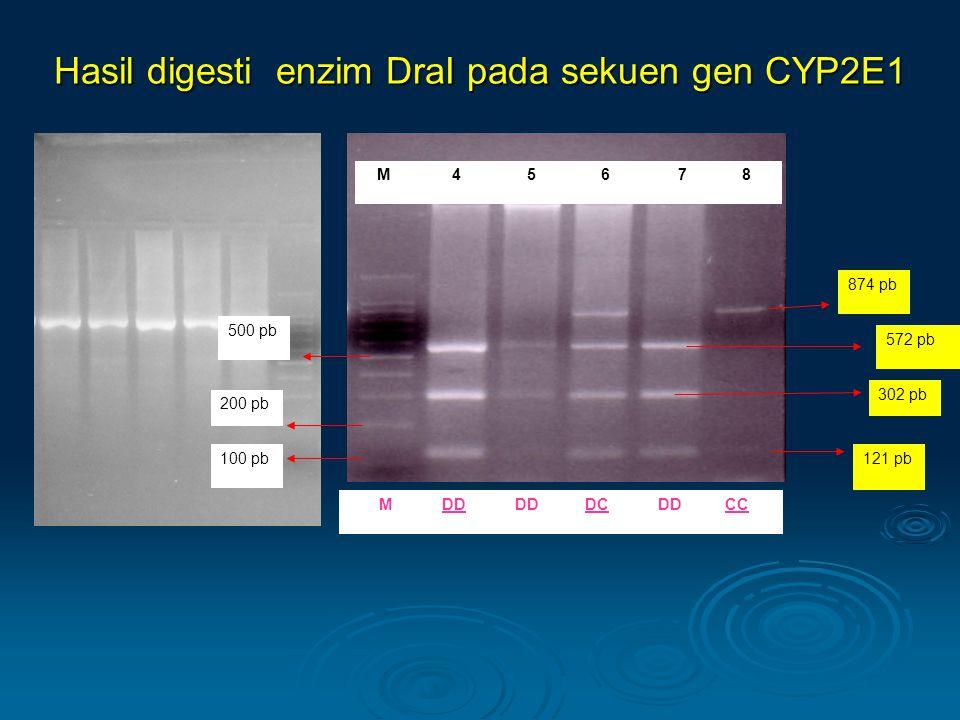 Hasil digesti enzim DraI pada sekuen gen CYP2E1 M 4 5 6 7 8 500 pb 572 pb 200 pb 121 pb 302 pb 100 pb 874 pb MDD DCDDCC