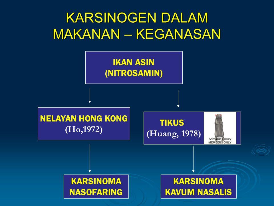 KARSINOGEN DALAM MAKANAN – KEGANASAN NELAYAN HONG KONG (Ho,1972) TIKUS (Huang, 1978) IKAN ASIN (NITROSAMIN) KARSINOMA NASOFARING KARSINOMA KAVUM NASALIS