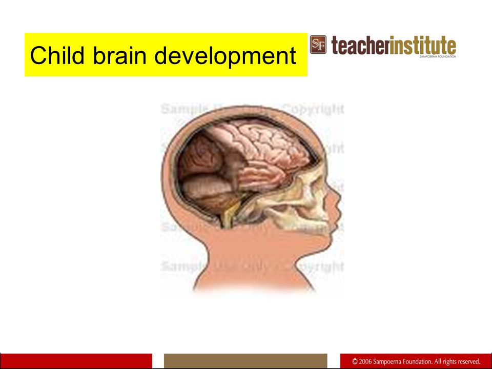 Child brain development
