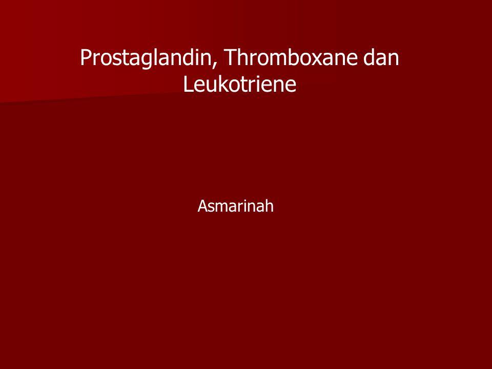 Prostaglandin, Thromboxane dan Leukotriene Asmarinah