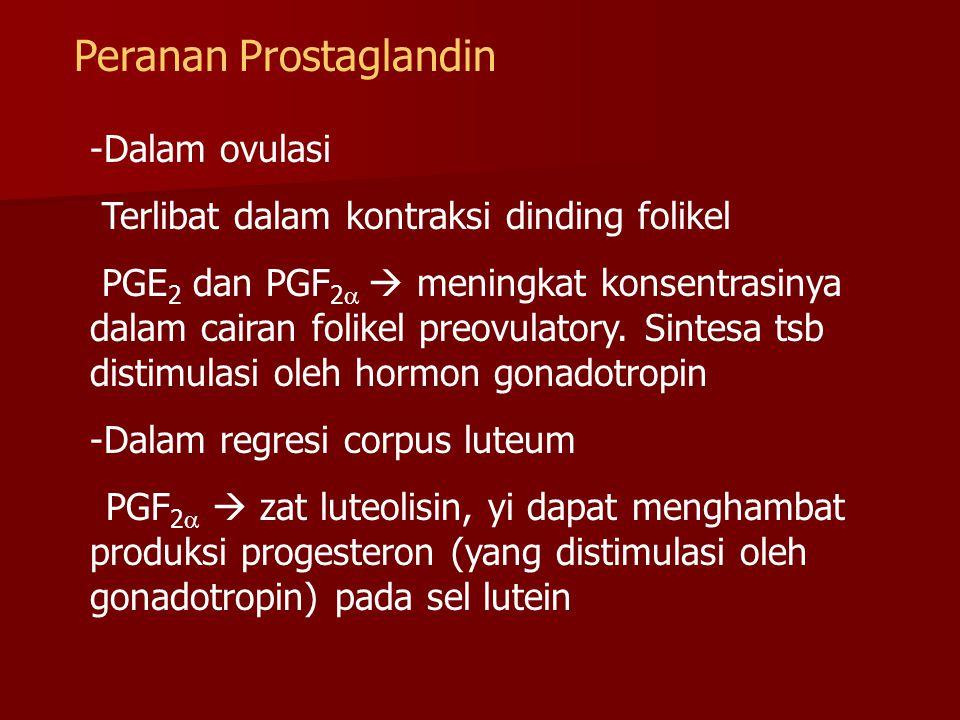 Peranan Prostaglandin -Dalam ovulasi Terlibat dalam kontraksi dinding folikel PGE 2 dan PGF 2   meningkat konsentrasinya dalam cairan folikel preovu