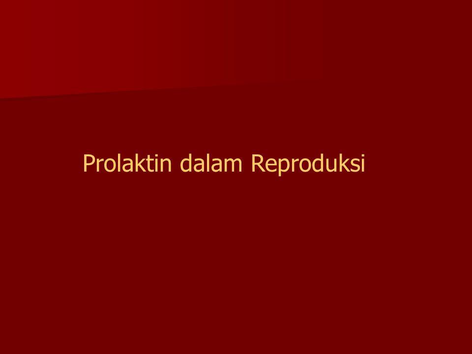 Prolaktin dalam Reproduksi