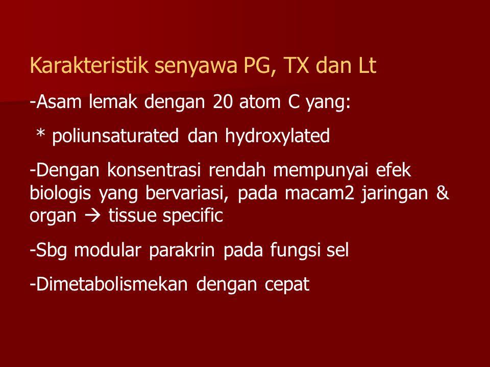 Karakteristik senyawa PG, TX dan Lt -Asam lemak dengan 20 atom C yang: * poliunsaturated dan hydroxylated -Dengan konsentrasi rendah mempunyai efek bi