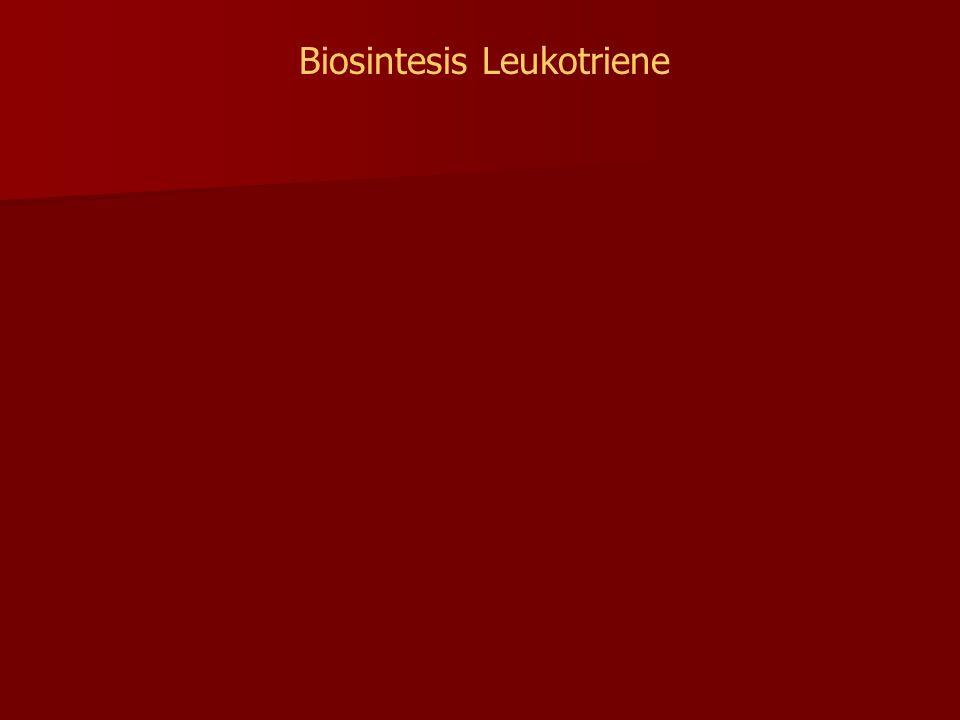 Biosintesis Leukotriene