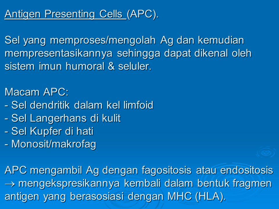 Antigen Presenting Cells (APC). Sel yang memproses/mengolah Ag dan kemudian mempresentasikannya sehingga dapat dikenal oleh sistem imun humoral & selu