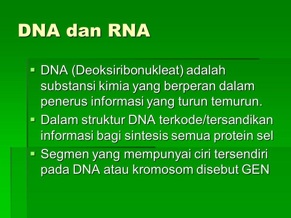 DNA dan RNA  DNA (Deoksiribonukleat) adalah substansi kimia yang berperan dalam penerus informasi yang turun temurun.  Dalam struktur DNA terkode/te