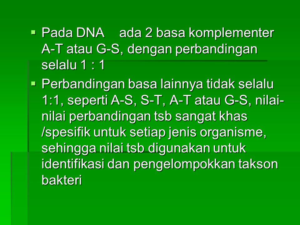  Pada DNA ada 2 basa komplementer A-T atau G-S, dengan perbandingan selalu 1 : 1  Perbandingan basa lainnya tidak selalu 1:1, seperti A-S, S-T, A-T