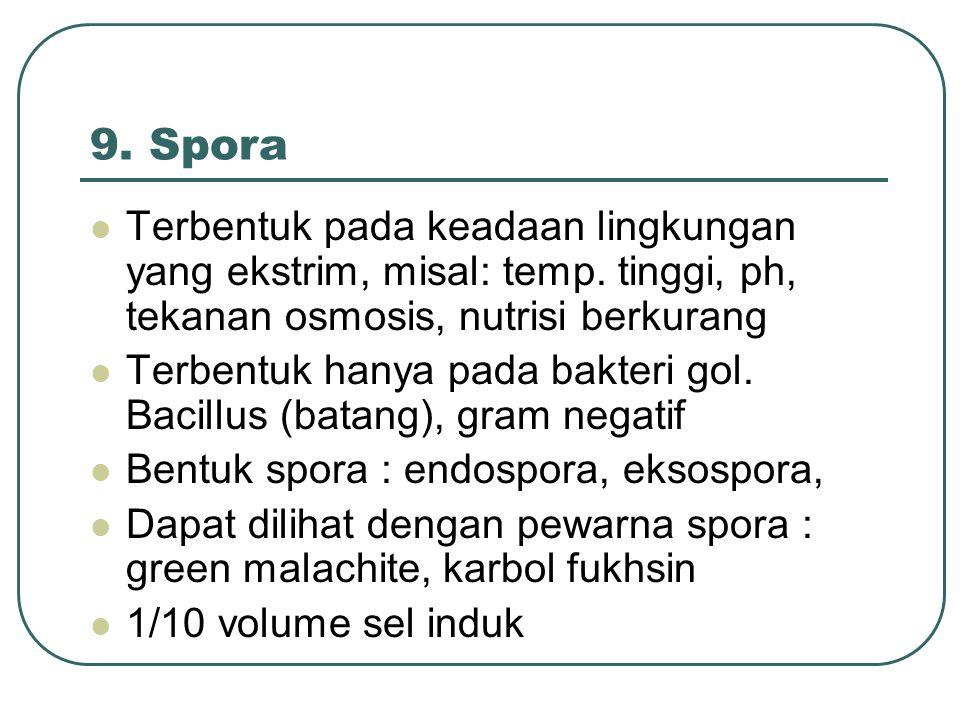 9. Spora Terbentuk pada keadaan lingkungan yang ekstrim, misal: temp. tinggi, ph, tekanan osmosis, nutrisi berkurang Terbentuk hanya pada bakteri gol.
