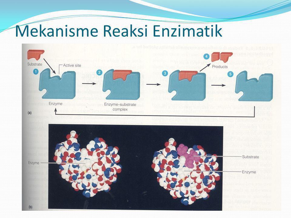 Mekanisme Reaksi Enzimatik