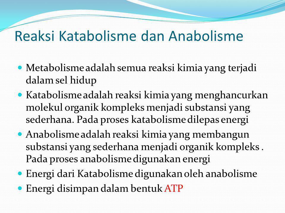 Reaksi Katabolisme dan Anabolisme Metabolisme adalah semua reaksi kimia yang terjadi dalam sel hidup Katabolisme adalah reaksi kimia yang menghancurka