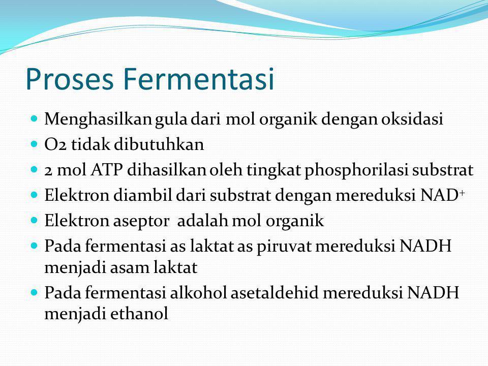 Proses Fermentasi Menghasilkan gula dari mol organik dengan oksidasi O2 tidak dibutuhkan 2 mol ATP dihasilkan oleh tingkat phosphorilasi substrat Elek