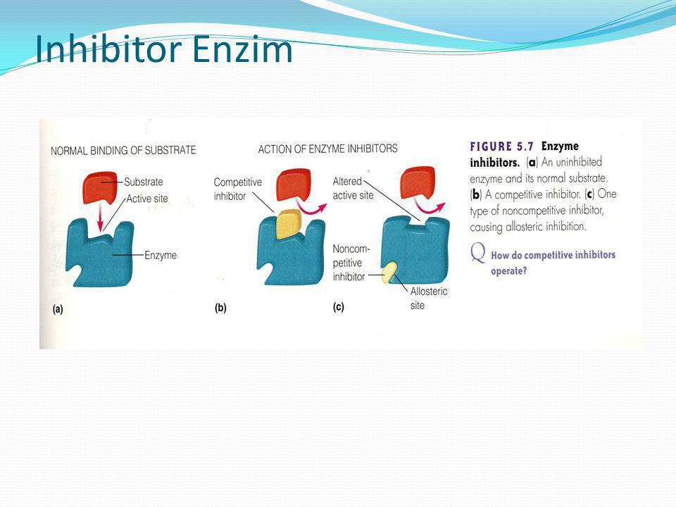 Inhibitor Enzim