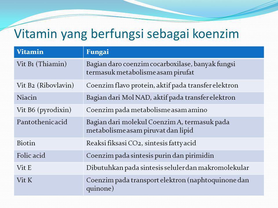Vitamin yang berfungsi sebagai koenzim VitaminFungai Vit B1 (Thiamin)Bagian daro coenzim cocarboxilase, banyak fungsi termasuk metabolisme asam pirufa