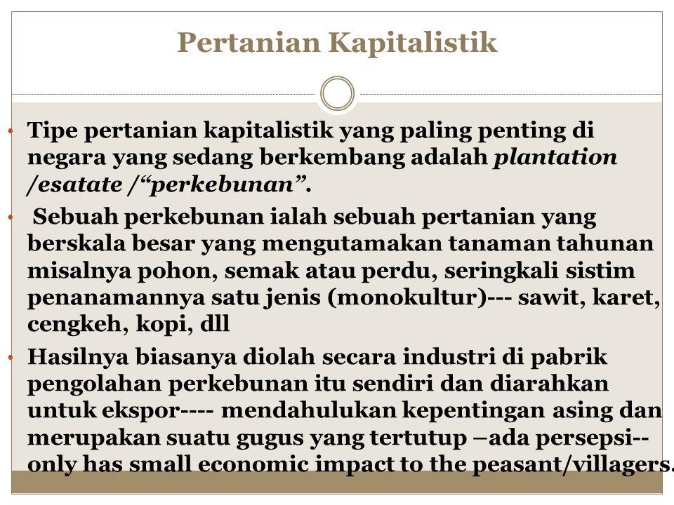 Pertanian Kapitalistik Tipe pertanian kapitalistik yang paling penting di negara yang sedang berkembang adalah plantation /esatate / perkebunan .