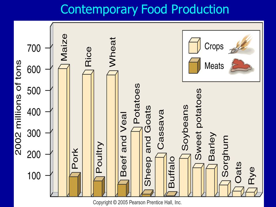 Contemporary Food Production