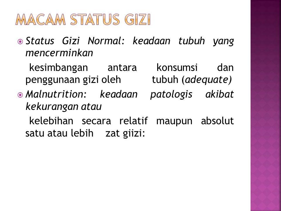  Status Gizi Normal: keadaan tubuh yang mencerminkan kesimbangan antara konsumsi dan penggunaan gizi oleh tubuh (adequate)  Malnutrition: keadaan pa