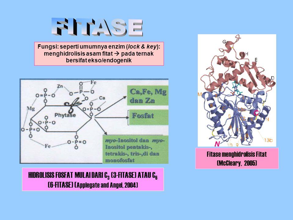 HIDROLISIS FOSFAT MULAI DARI C 3 (3-FITASE) ATAU C 6 (6-FITASE) ( Applegate and Angel, 2004) Fitase menghidrolisis Fitat (McCleary, 2005) Fungsi: sepe