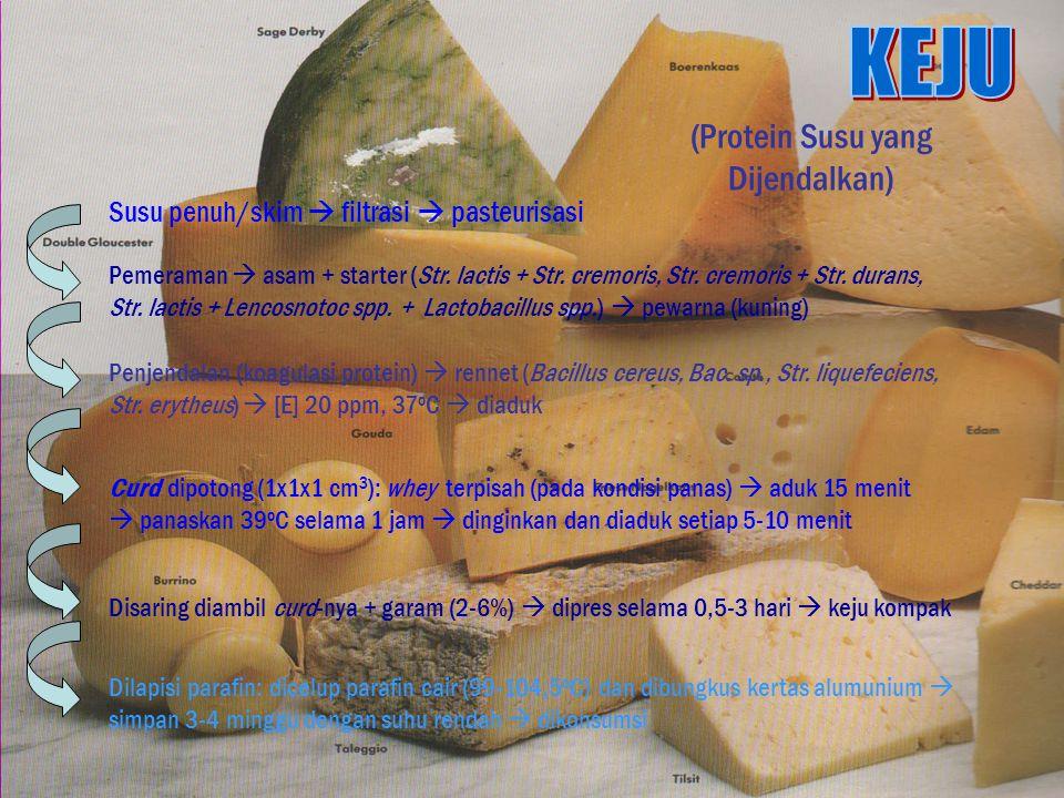 (Protein Susu yang Dijendalkan) Susu penuh/skim  filtrasi  pasteurisasi Pemeraman  asam + starter (Str.