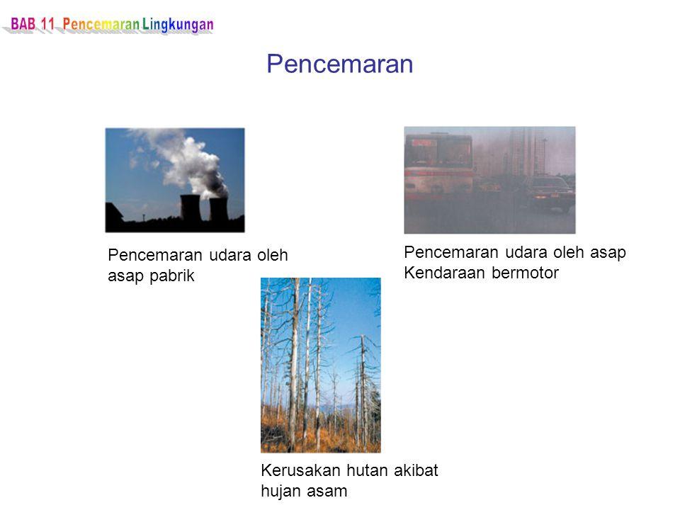 Pencemaran Pencemaran udara oleh asap pabrik Pencemaran udara oleh asap Kendaraan bermotor Kerusakan hutan akibat hujan asam